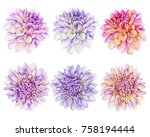 set beautiful purple  pink... | Shutterstock . vector #758194444