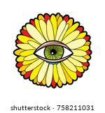 transvaal daisy isolated on the ... | Shutterstock .eps vector #758211031