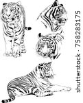 set of vector drawings on the... | Shutterstock .eps vector #758283175