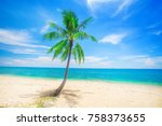 tropical beach with coconut palm | Shutterstock . vector #758373655