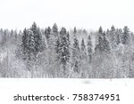 landscape in the winter cloudy... | Shutterstock . vector #758374951