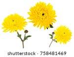 Set Of Three Bright Yellow...