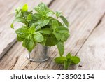 bunch of fresh green organic... | Shutterstock . vector #758502154