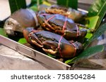 close up big fresh crabs are... | Shutterstock . vector #758504284