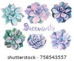 watercolor succulents  green... | Shutterstock . vector #758543557