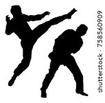 fight between two taekwondo... | Shutterstock .eps vector #758560909