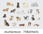 puppy dog pets cute animals... | Shutterstock . vector #758654641