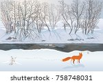fox in the winter forest... | Shutterstock .eps vector #758748031