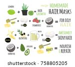homemade hair mask recipes. and ... | Shutterstock .eps vector #758805205
