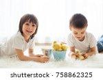 cute little children  boy... | Shutterstock . vector #758862325