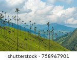 wax palm trees of cocora valley ... | Shutterstock . vector #758967901