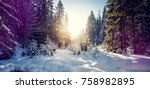 fantastic winter forest... | Shutterstock . vector #758982895
