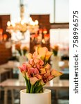 colorful flowers for display or ... | Shutterstock . vector #758996575