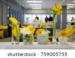 colorful flowers for display or ... | Shutterstock . vector #759005755
