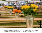 colorful flowers for display or ... | Shutterstock . vector #759007879