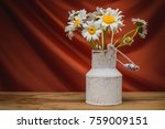 still life   bouquet of... | Shutterstock . vector #759009151