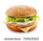 fresh chicken burger isolated... | Shutterstock . vector #759025525