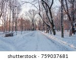 sunny winter morning with snow... | Shutterstock . vector #759037681