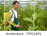 farmer using organic crop...
