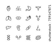 human organ icon set.... | Shutterstock .eps vector #759147871