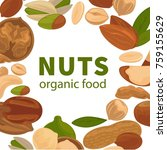 nuts organic raw food vector... | Shutterstock .eps vector #759155629
