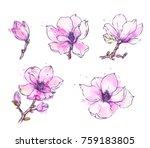 ink  pencil  watercolor... | Shutterstock .eps vector #759183805