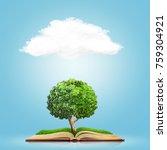 open book with green grass... | Shutterstock . vector #759304921