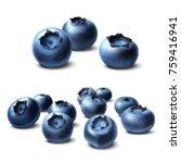 blueberry. forest berries... | Shutterstock .eps vector #759416941