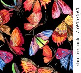 exotic  butterfly wild insect...   Shutterstock . vector #759457561