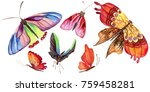 exotic  butterfly wild insect... | Shutterstock . vector #759458281