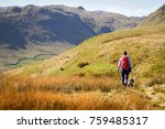 Stock photo a hiker and their dog walking along low moss gill below the summits of place fell and high dodd in 759485317