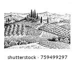 rustic vineyard. rural... | Shutterstock . vector #759499297