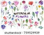 watercolor painted collection... | Shutterstock . vector #759529939