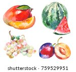 watercolor painted collection... | Shutterstock . vector #759529951