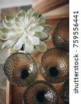 succulent in pot on wooden... | Shutterstock . vector #759556441