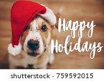 happy holidays text  seasonal... | Shutterstock . vector #759592015