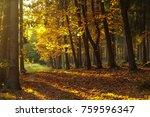 sunset in nature | Shutterstock . vector #759596347