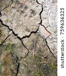 Small photo of Barren earth. Dry cracked earth background. Cracked mud pattern. Soil In cracks.Creviced texture.Drought land. Environment drought.