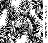 black vector palm leaves on... | Shutterstock .eps vector #759650041