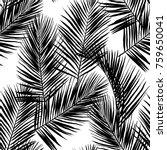 black vector palm leaves on... | Shutterstock .eps vector #759650041