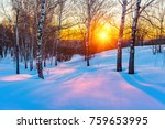 colorful sunset in winter park | Shutterstock . vector #759653995