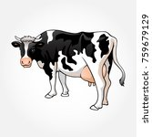 vector illustration of a cow | Shutterstock .eps vector #759679129
