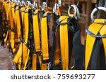 climbing safety belt.... | Shutterstock . vector #759693277