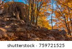 photographs of the natural park ... | Shutterstock . vector #759721525