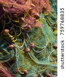 sea nets background   fishing...   Shutterstock . vector #759768835