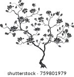 Silhouette Of A Cherry Branch....