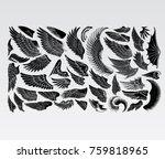 birds wings vector eagle  | Shutterstock .eps vector #759818965