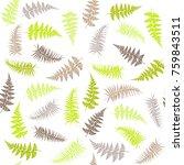 fern frond herbs  tropical... | Shutterstock . vector #759843511