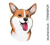 cute welsh corgi face... | Shutterstock .eps vector #759848929