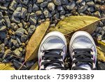 pair of child white shoes on... | Shutterstock . vector #759893389